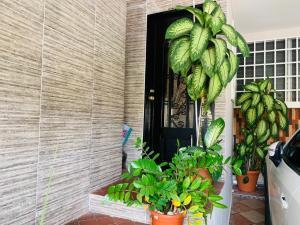 Casa En Ventaen Panama, Altos De Santa Maria, Panama, PA RAH: 19-6275