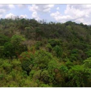 Terreno En Ventaen Chame, Sora, Panama, PA RAH: 19-6277