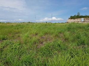 Terreno En Ventaen San Carlos, San Carlos, Panama, PA RAH: 19-6362