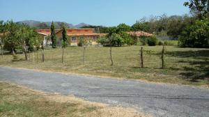 Terreno En Ventaen Chame, Las Lajas, Panama, PA RAH: 19-6543