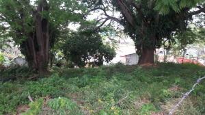 Terreno En Ventaen Panama, Hato Pintado, Panama, PA RAH: 19-7024
