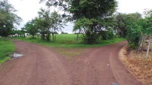 Terreno En Ventaen Las Tablas, Las Tablas, Panama, PA RAH: 19-7387
