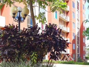 Apartamento En Alquileren Panama, Don Bosco, Panama, PA RAH: 19-7631
