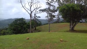 Terreno En Ventaen Pacora, Cerro Azul, Panama, PA RAH: 19-7662