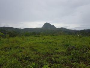 Terreno En Ventaen Cocle, Cocle, Panama, PA RAH: 19-7668