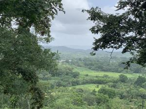 Terreno En Ventaen Chilibre, Maria Eugenia, Panama, PA RAH: 19-7941