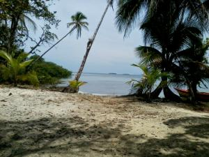 Terreno En Ventaen Bocas Del Toro, Bocas Del Toro, Panama, PA RAH: 19-8633