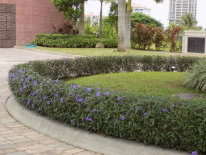 Terreno En Ventaen Panama, Santa Maria, Panama, PA RAH: 19-8020
