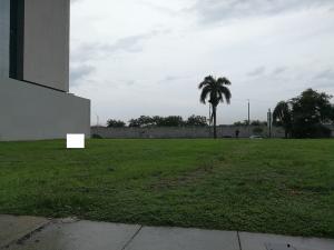 Terreno En Ventaen Panama, Santa Maria, Panama, PA RAH: 19-8179