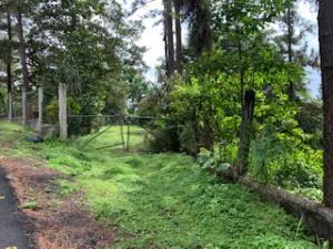 Terreno En Ventaen Pacora, Cerro Azul, Panama, PA RAH: 19-8310
