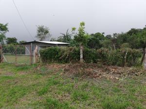 Terreno En Ventaen Dolega, Potrerillos, Panama, PA RAH: 19-8355