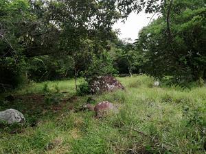 Terreno En Ventaen Boquete, Alto Boquete, Panama, PA RAH: 19-8323