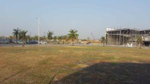 Terreno En Alquileren Panama, Santa Maria, Panama, PA RAH: 19-8673