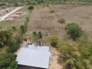 Terreno En Ventaen Penonome, El Coco, Panama, PA RAH: 19-8557