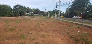 Terreno En Ventaen Panama, Tocumen, Panama, PA RAH: 19-8586