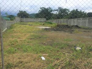 Terreno En Alquileren Chilibre, Chilibre Centro, Panama, PA RAH: 19-8747