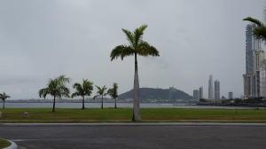 Terreno En Ventaen Panama, Punta Pacifica, Panama, PA RAH: 19-9414