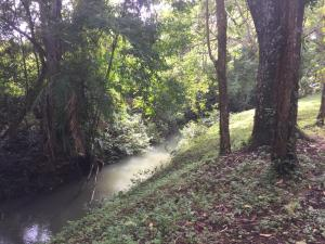 Terreno En Ventaen Panama Oeste, Arraijan, Panama, PA RAH: 19-9513