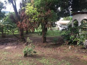 Terreno En Ventaen Panama, Milla 8, Panama, PA RAH: 19-9625