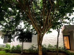Apartamento En Alquileren Panama, Panama Pacifico, Panama, PA RAH: 19-9771
