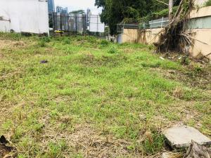 Terreno En Ventaen Panama, San Francisco, Panama, PA RAH: 19-9948