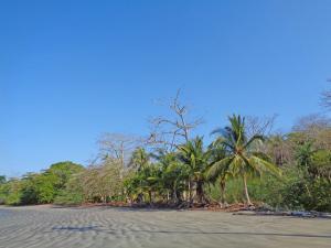 Terreno En Ventaen San Lorenzo, San Lorenzo, Panama, PA RAH: 19-10155