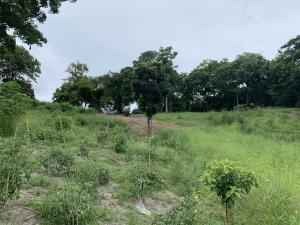Terreno En Ventaen San Carlos, San Carlos, Panama, PA RAH: 19-10554