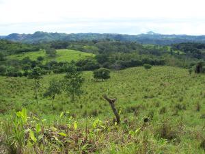Terreno En Ventaen Remedios, El Nancito, Panama, PA RAH: 19-10670