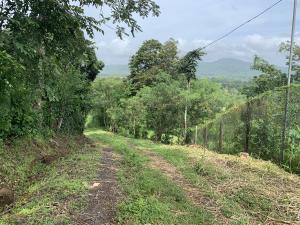 Terreno En Ventaen Chilibre, Maria Eugenia, Panama, PA RAH: 19-11335