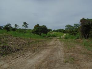 Terreno En Ventaen San Carlos, El Espino, Panama, PA RAH: 19-11564