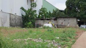 Terreno En Ventaen Panama, Tocumen, Panama, PA RAH: 19-12344