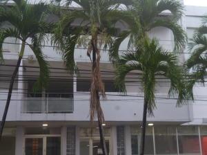 Apartamento En Alquileren Panama, El Cangrejo, Panama, PA RAH: 19-12393