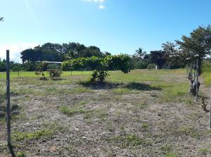 Terreno En Ventaen San Carlos, San Carlos, Panama, PA RAH: 19-12463