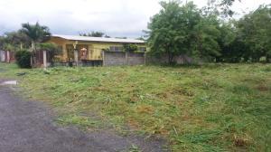 Terreno En Ventaen La Chorrera, Chorrera, Panama, PA RAH: 20-30