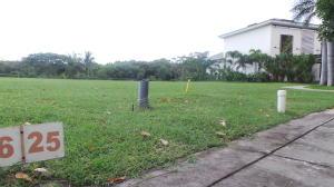 Terreno En Ventaen Panama, Santa Maria, Panama, PA RAH: 20-52