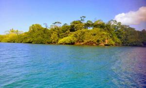 Terreno En Ventaen Bocas Del Toro, Bocas Del Toro, Panama, PA RAH: 20-53