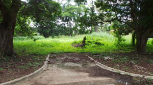 Terreno En Ventaen Panama, Amador, Panama, PA RAH: 20-108