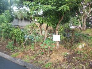 Terreno En Ventaen Panama, Rio Abajo, Panama, PA RAH: 20-154