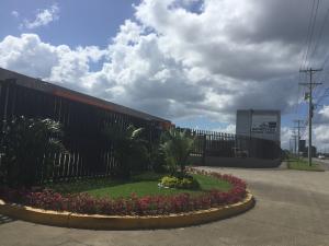Galera En Alquileren Panama, Pacora, Panama, PA RAH: 20-379