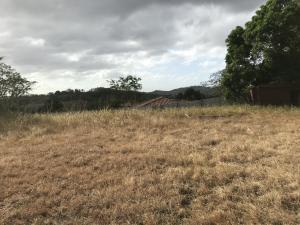 Terreno En Ventaen Panama, Las Cumbres, Panama, PA RAH: 20-393