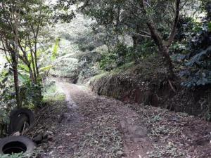 Terreno En Ventaen Tierras Altas, Nueva California, Panama, PA RAH: 20-530