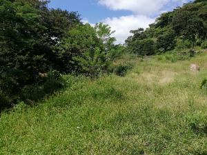 Terreno En Ventaen David, David, Panama, PA RAH: 20-600
