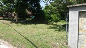 Terreno En Ventaen San Carlos, San Carlos, Panama, PA RAH: 20-662