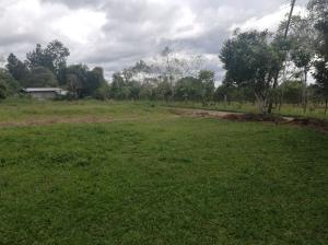 Terreno En Ventaen Dolega, Potrerillos Abajo, Panama, PA RAH: 20-673