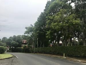 Terreno En Ventaen Panama, Albrook, Panama, PA RAH: 20-1113
