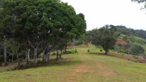 Terreno En Ventaen Pacora, Cerro Azul, Panama, PA RAH: 20-1136