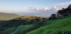 Terreno En Ventaen Pacora, Cerro Azul, Panama, PA RAH: 20-1138
