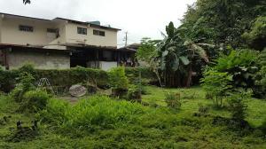 Terreno En Ventaen Panama, Carrasquilla, Panama, PA RAH: 20-1252