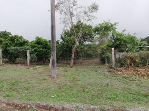 Terreno En Ventaen Dolega, Potrerillos, Panama, PA RAH: 20-1340