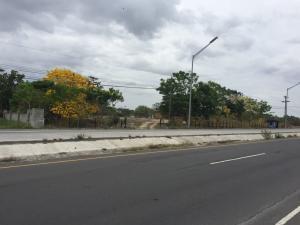 Terreno En Ventaen Cocle, Cocle, Panama, PA RAH: 20-1450